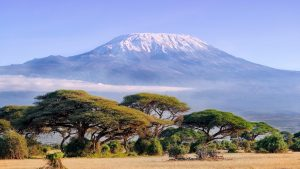 kilimanjaro-base-safari-bike-africa