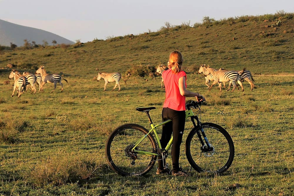 safari-biking-bici-5