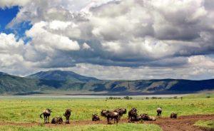 safari-tribus-tanzania-2