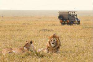 safari_clasico_tanzania-6
