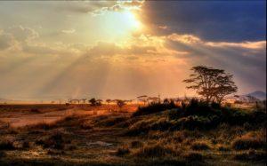 safari_clasico_tanzania-9