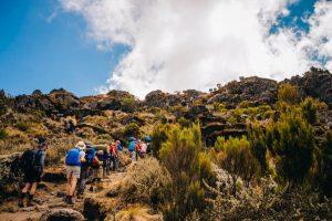 safaris-trekking-kilimanjaro-machame-5